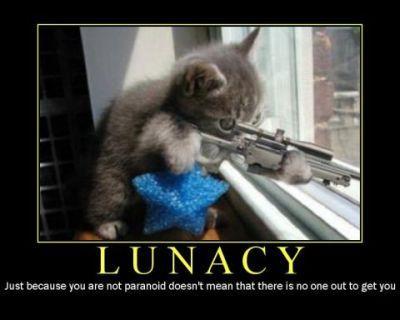 LunacyLolCat