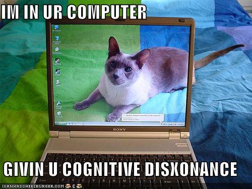 LOLcat cognitive disonance